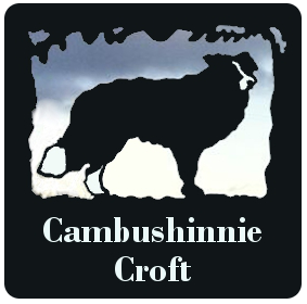 Self-Catering Holidays at Cambushinnie Croft